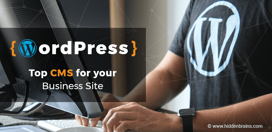 WordPress Development for your Business Site