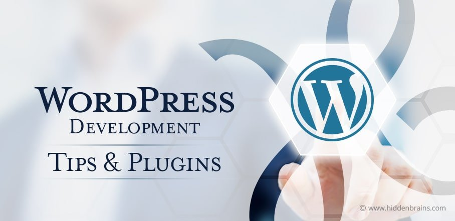 wordpress best practices for developers