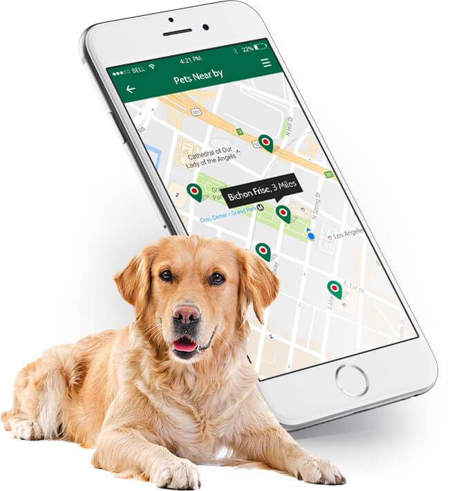 nearby pet rescue mobile app