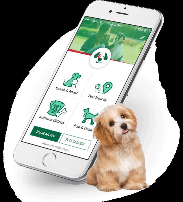 pet rescue mobile app